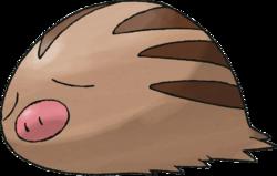 Événement de Heures du Pokémon vedette - Marcacrin