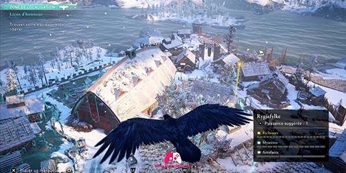 Vision grand corbeau