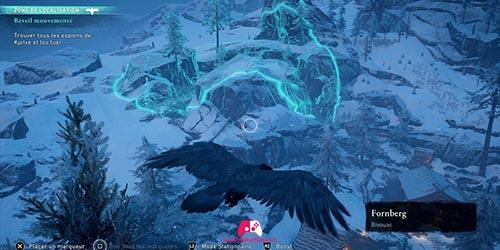 Corbeau montagne