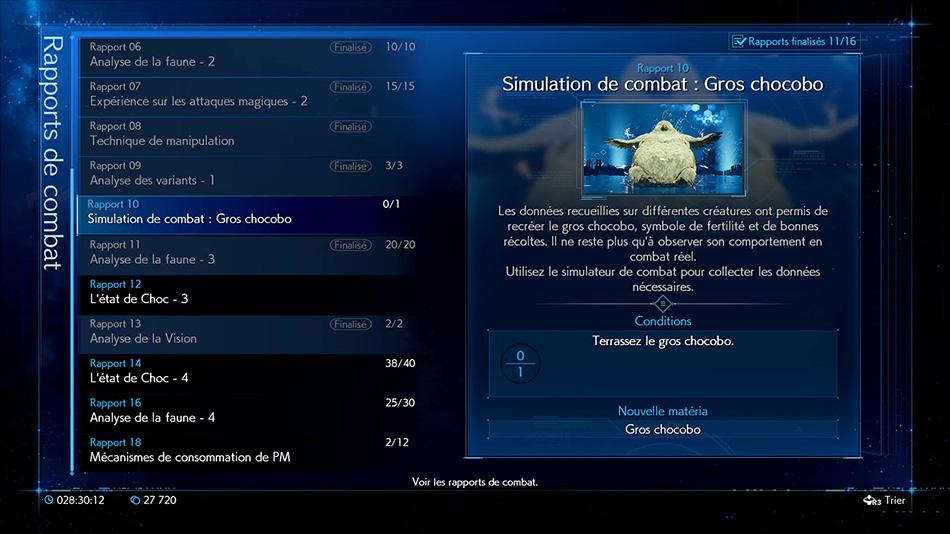 Rapport 10 - Simulation de combat - Gros chocobo