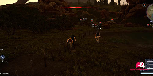 Combat avec les Spiracorne