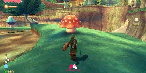 Deuxième champignon