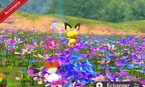 Mission Cache-cache dans les fleurs