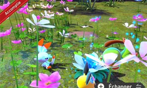 Mission Trois amis dans les fleurs