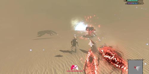 Suivre Fyra dans le désert