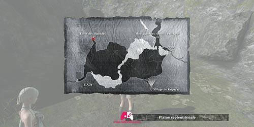 Carte de la forêt