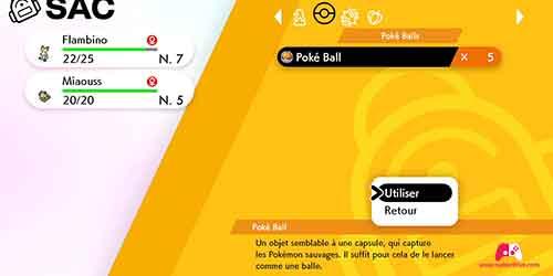 Utiliser une Poké Ball