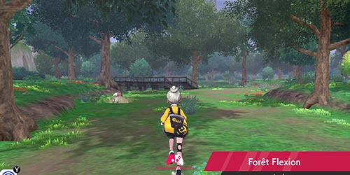 Forêt Flexion