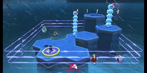 Combat mystère sur la glace