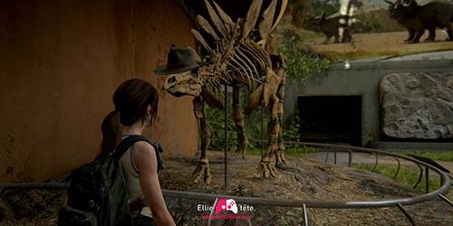 Chapeau sur le dinosaure