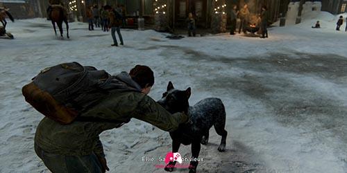 Carresser le chien