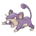 Rattata est de la famille de Rattatac (Alola)
