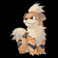 Caninos est de la famille de Arcanin