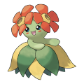 Joliflor est de la famille de Rafflesia